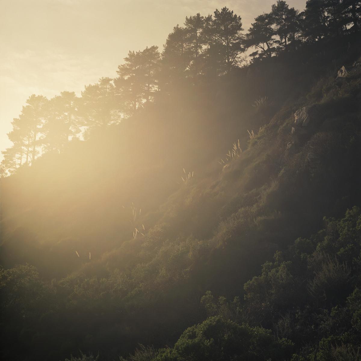 p+sun+combo.jpg