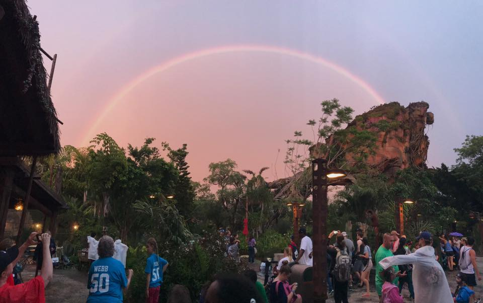 Amazing rainbow at Animal Kingdom