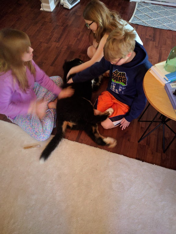 My nieces and nephew lovvved Hondo and he sure loved them! I think he still misses all their constant belly rubs!