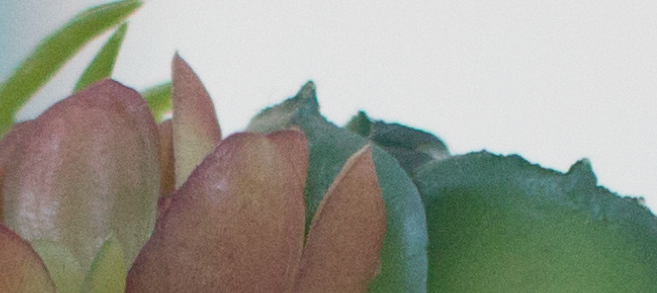ISO 640 (zoomed)