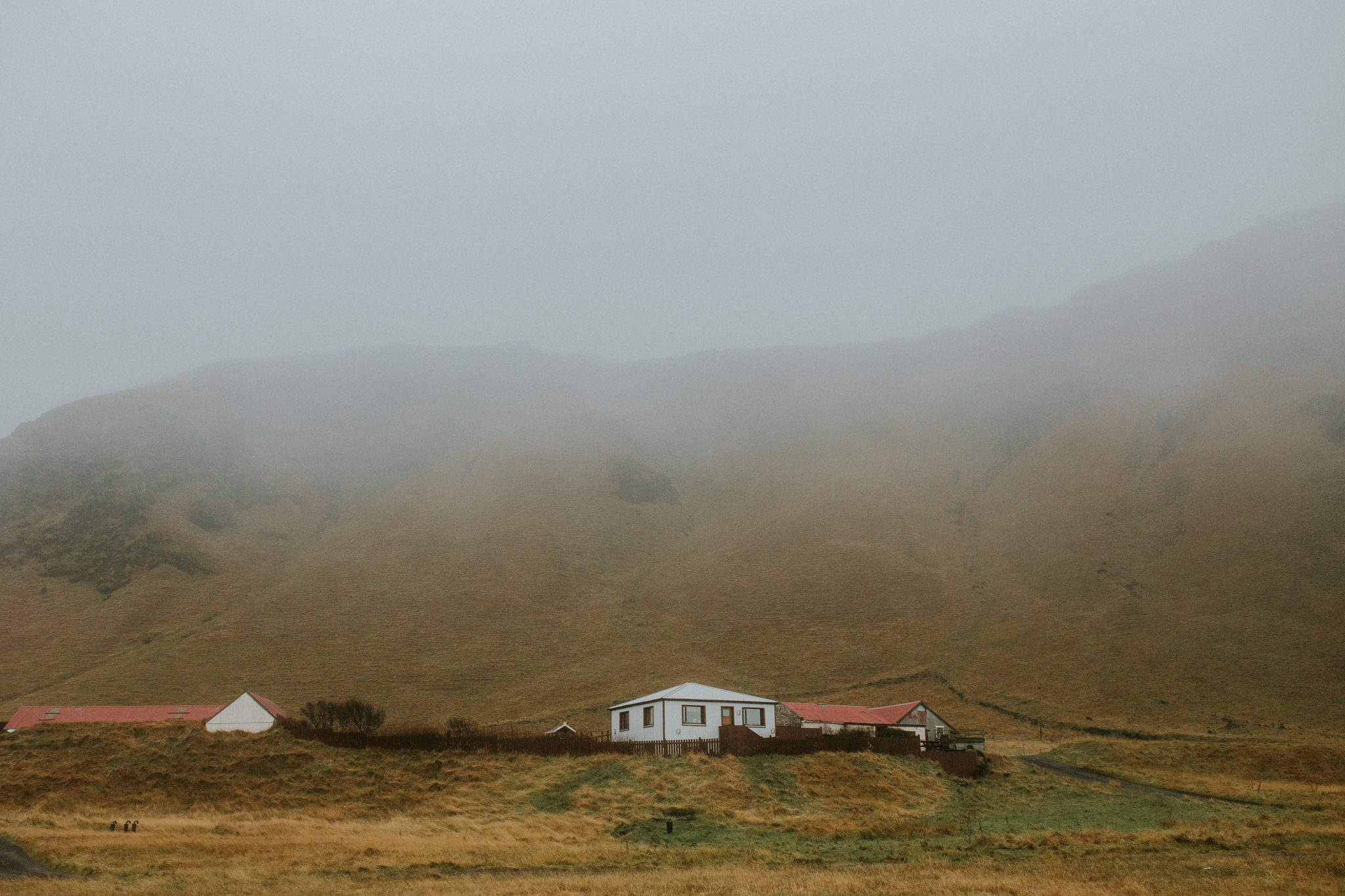 islandefamille89.jpg