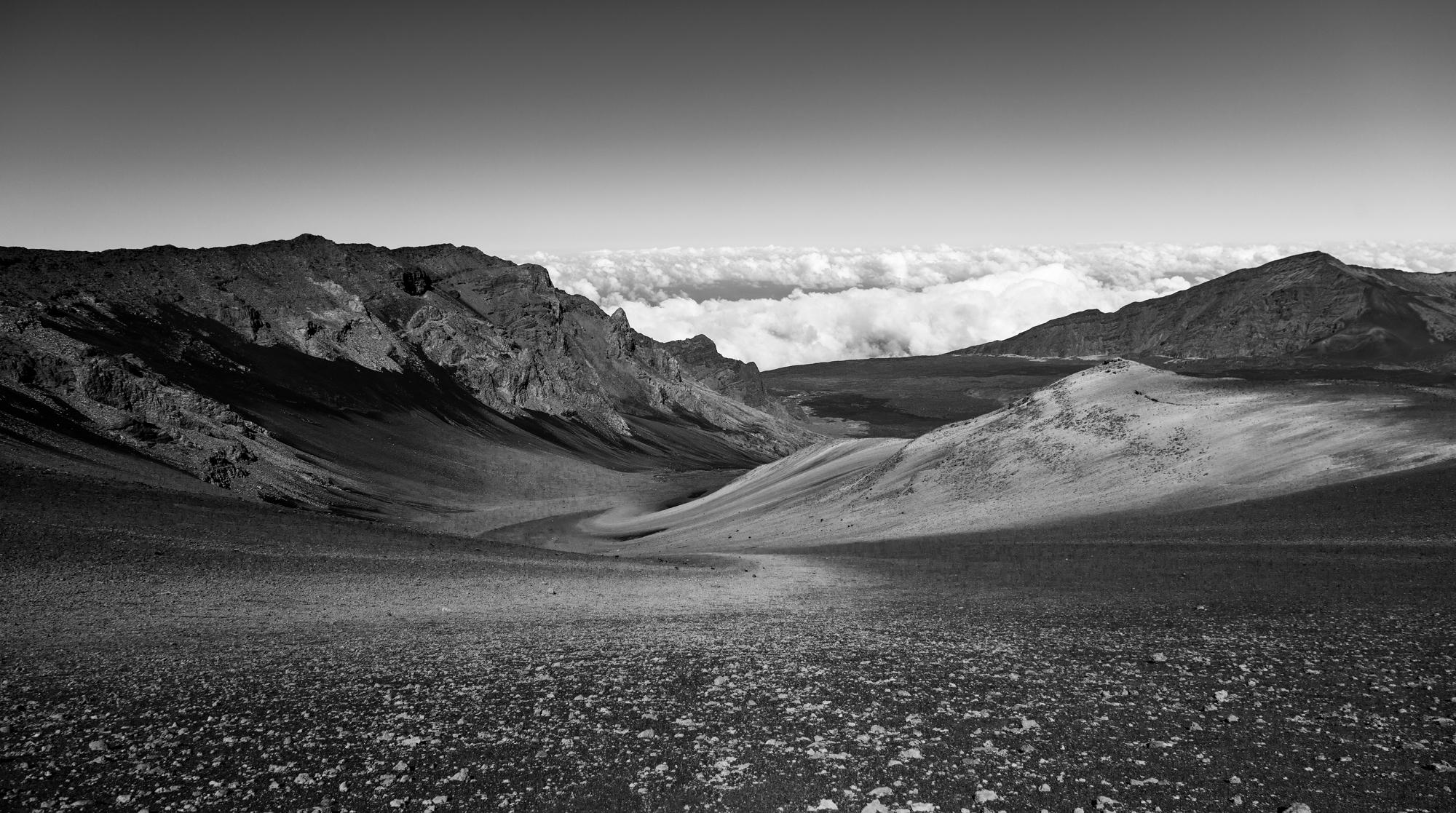 landscapes -8.jpg