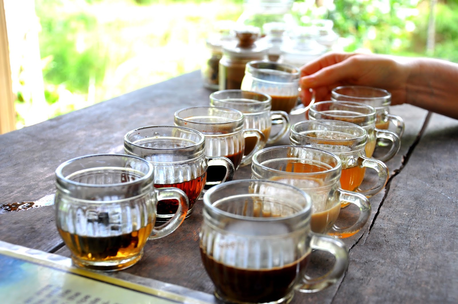 Bali, Indonesia  A sampling of Sumatran and Javanese beans, as well a brew made from beans pooped out by Civets, the local wild jungle cat.