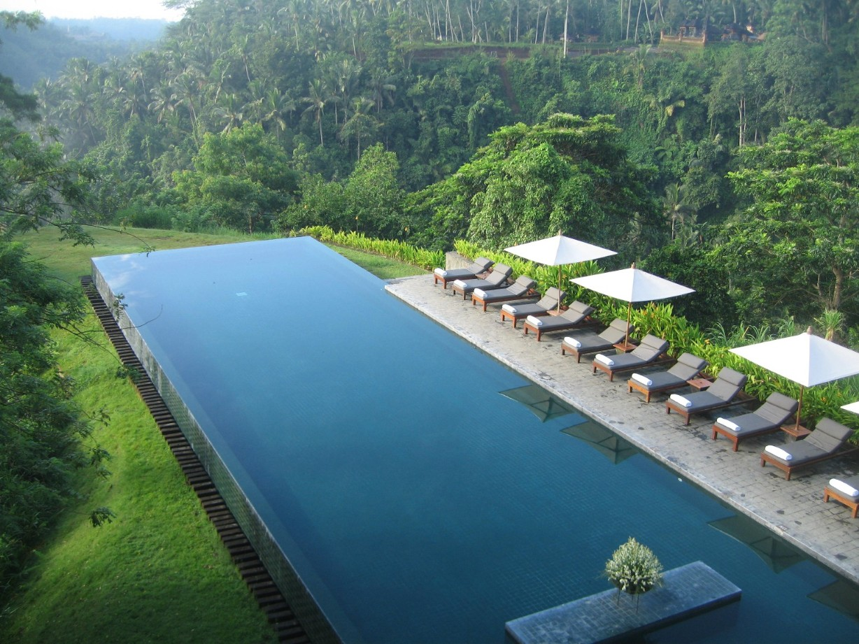 Alila, Ubud  The Pool in the middle of the Jungle