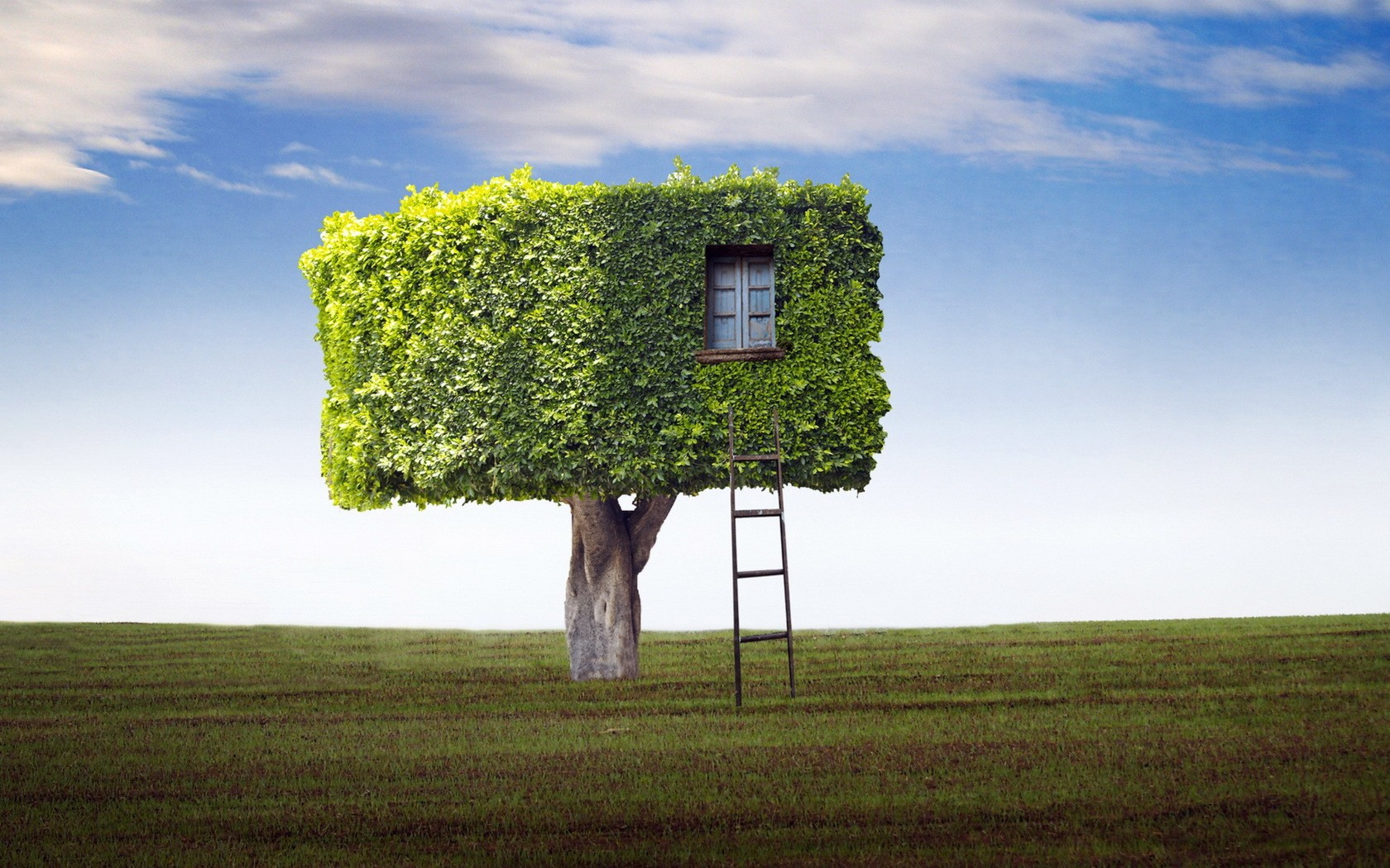 misc-fantasy-nature-house-tree-photo.jpg