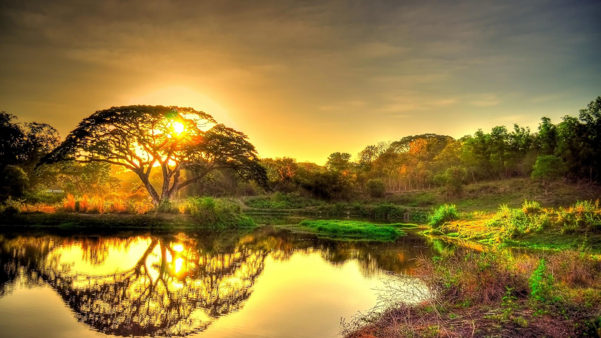 HD-Nature-Wallpapers-1080p-Full-Hd.jpg
