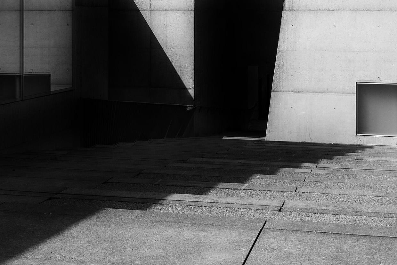 museum-franz-gertsch-light-shadows-II-vladimir-petek-photography.jpg