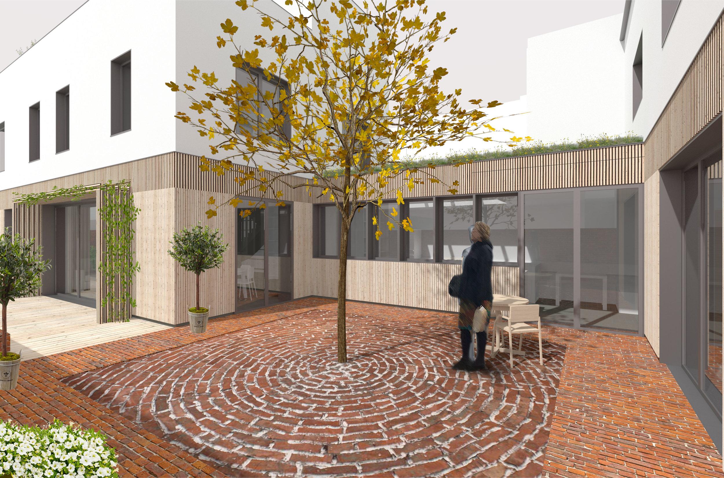 1722_Rax Lane Courtyard Planted.jpg