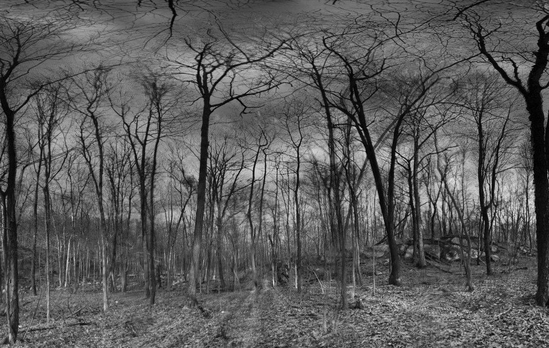 ©Jon-Marc Seimon 2010