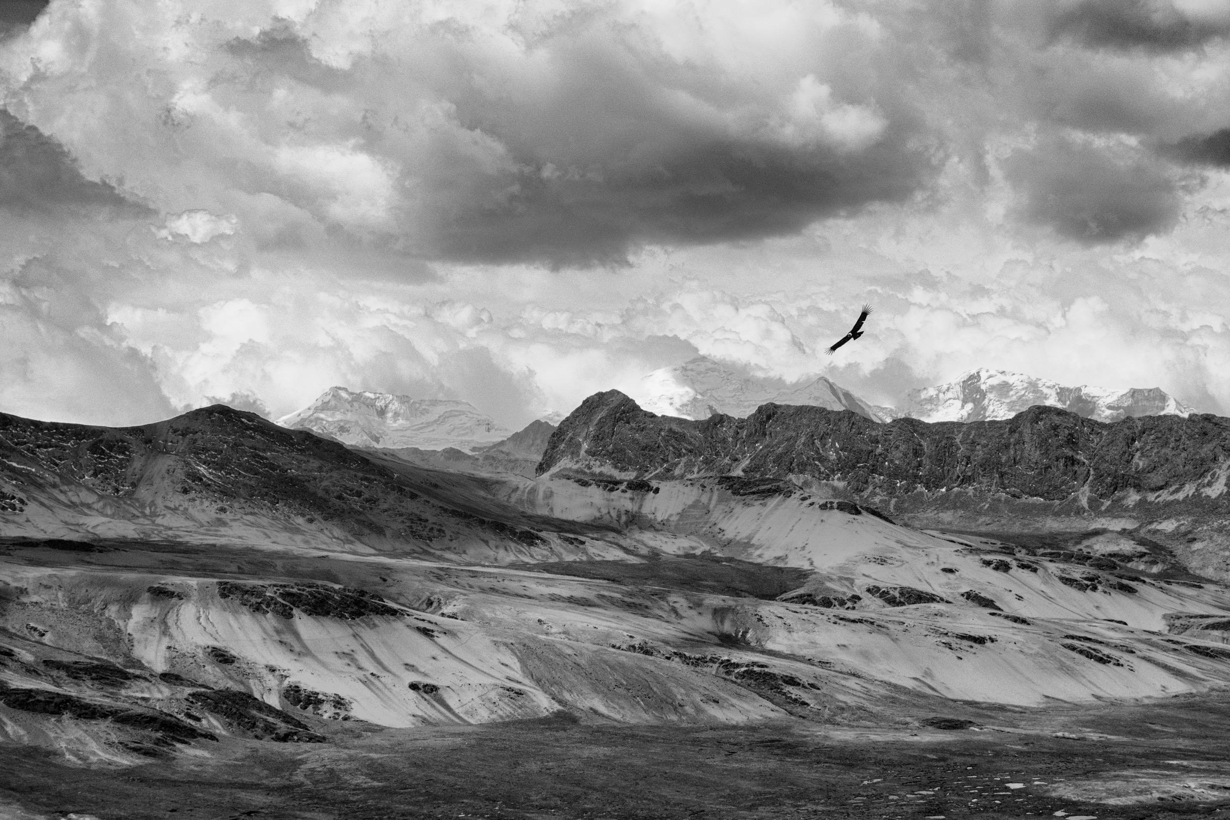 Condor Pass, Peru :: 2016
