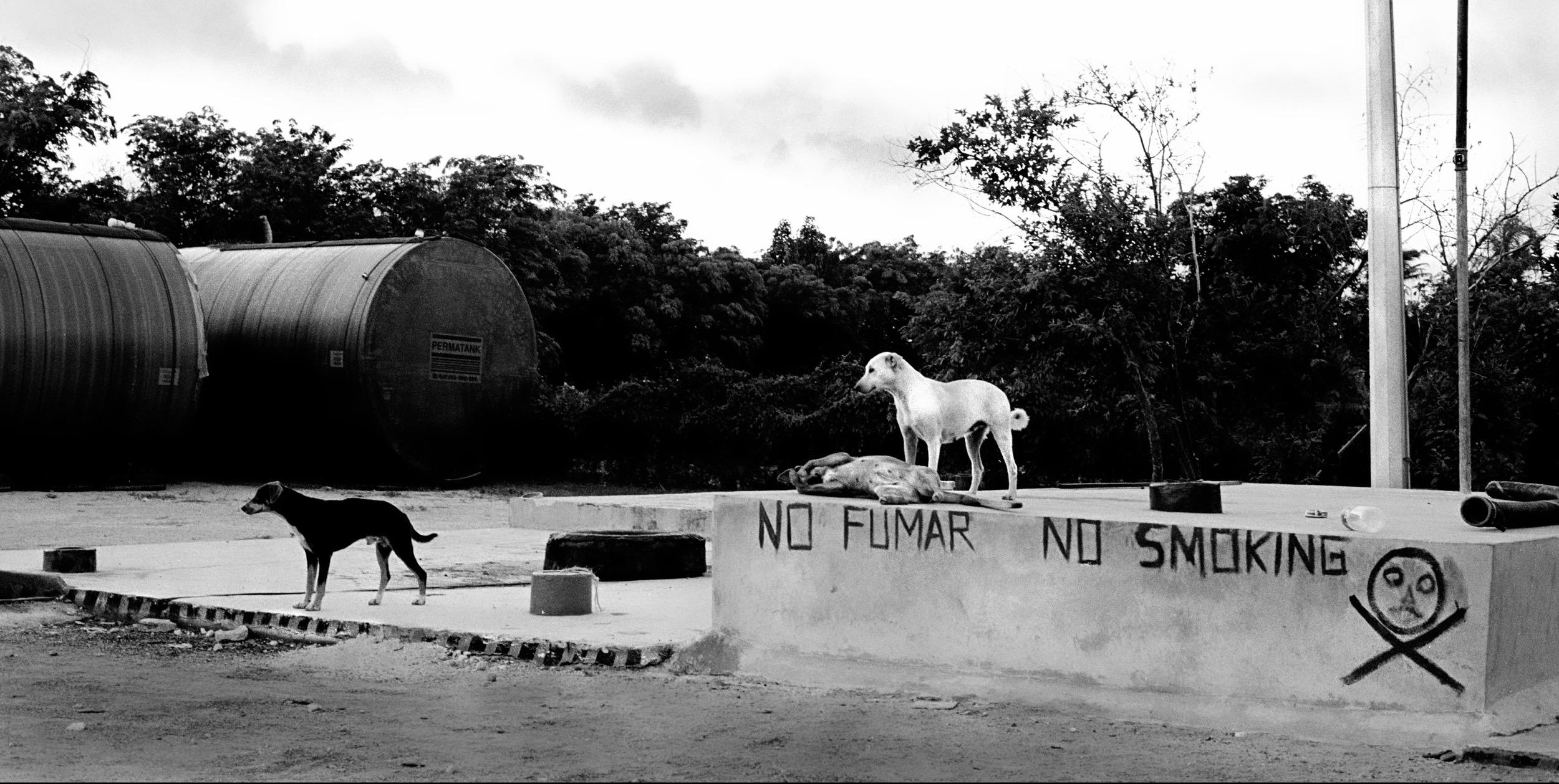 Yucatan, Mexico :: 2001