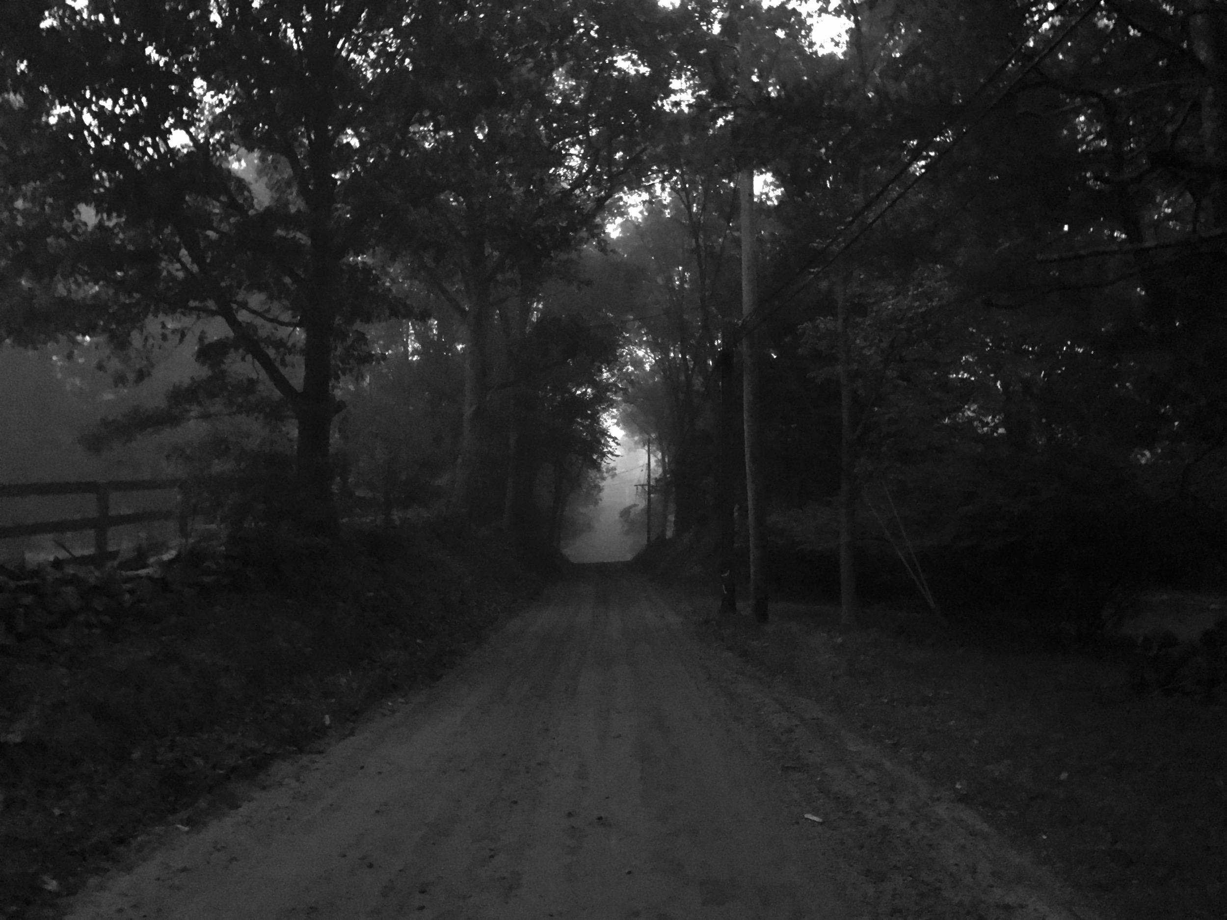 Black Brook Road, Pound Ridge, NY :: 2016
