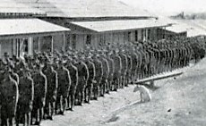 Pig in the military in 1917