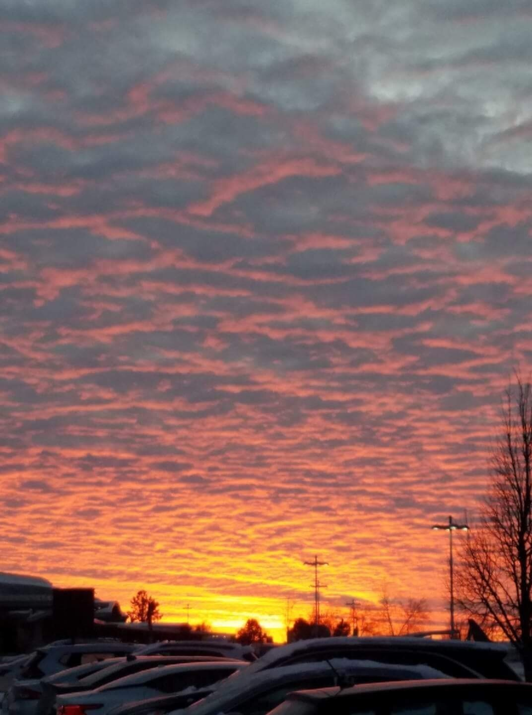 Wesley- Keep the sky in the morning and evening burnt orange for us. -