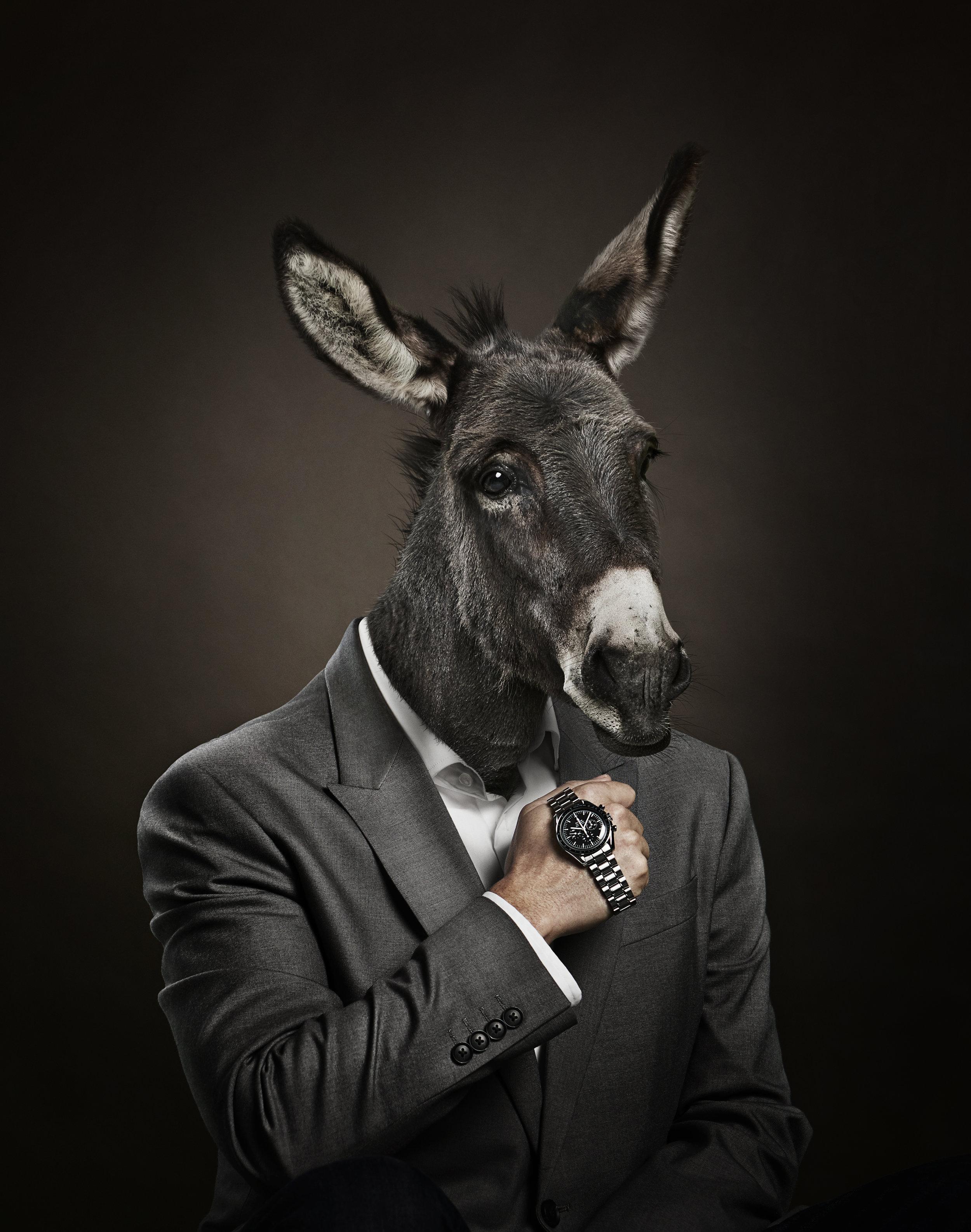 CC_TrustCamp_Donkey_d_forme.jpg