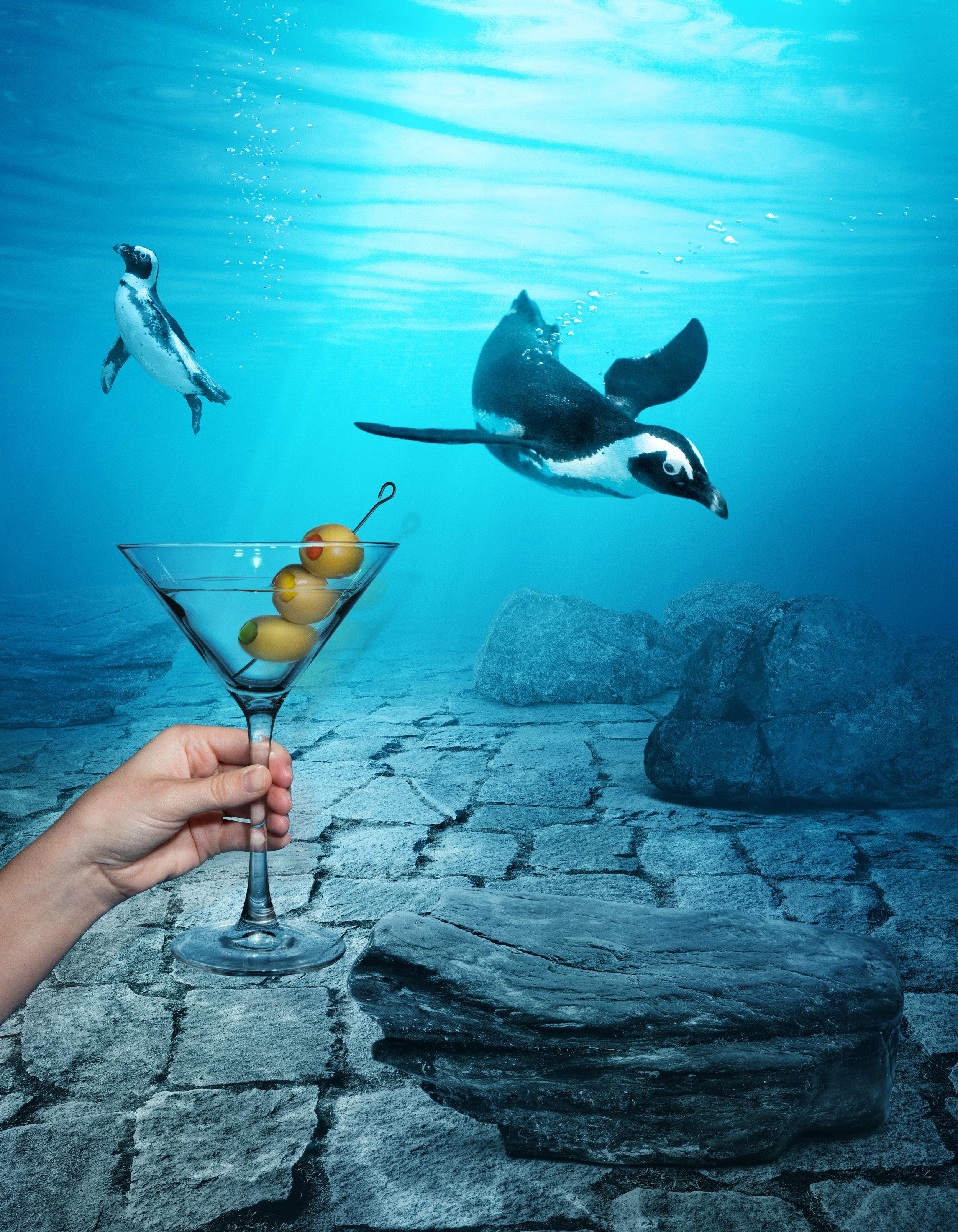 sips_under_penguins_stopngo@465.jpg