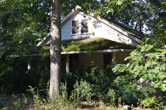 Cottage+5.jpg
