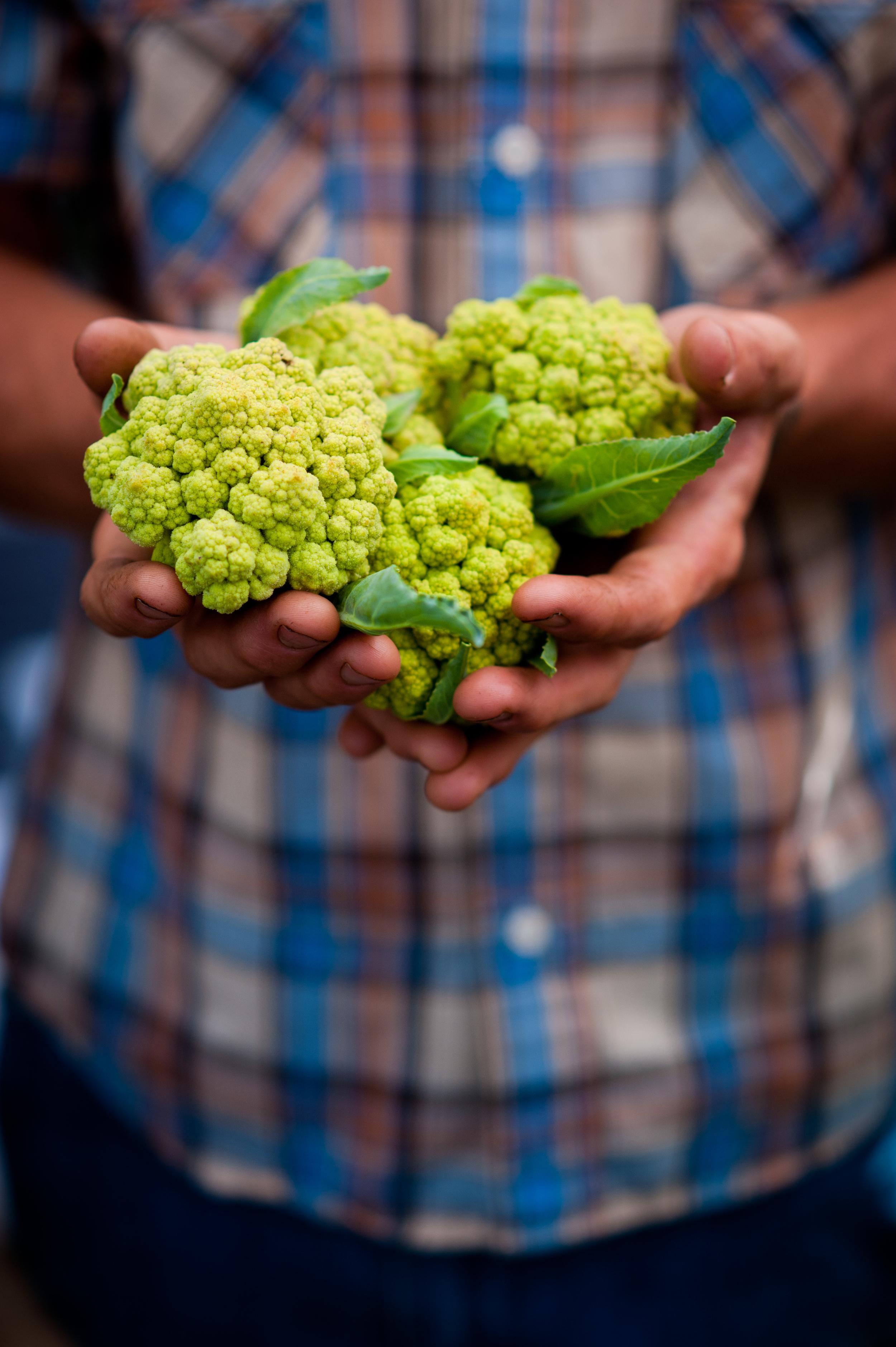 farmers_market_130622_68.jpg