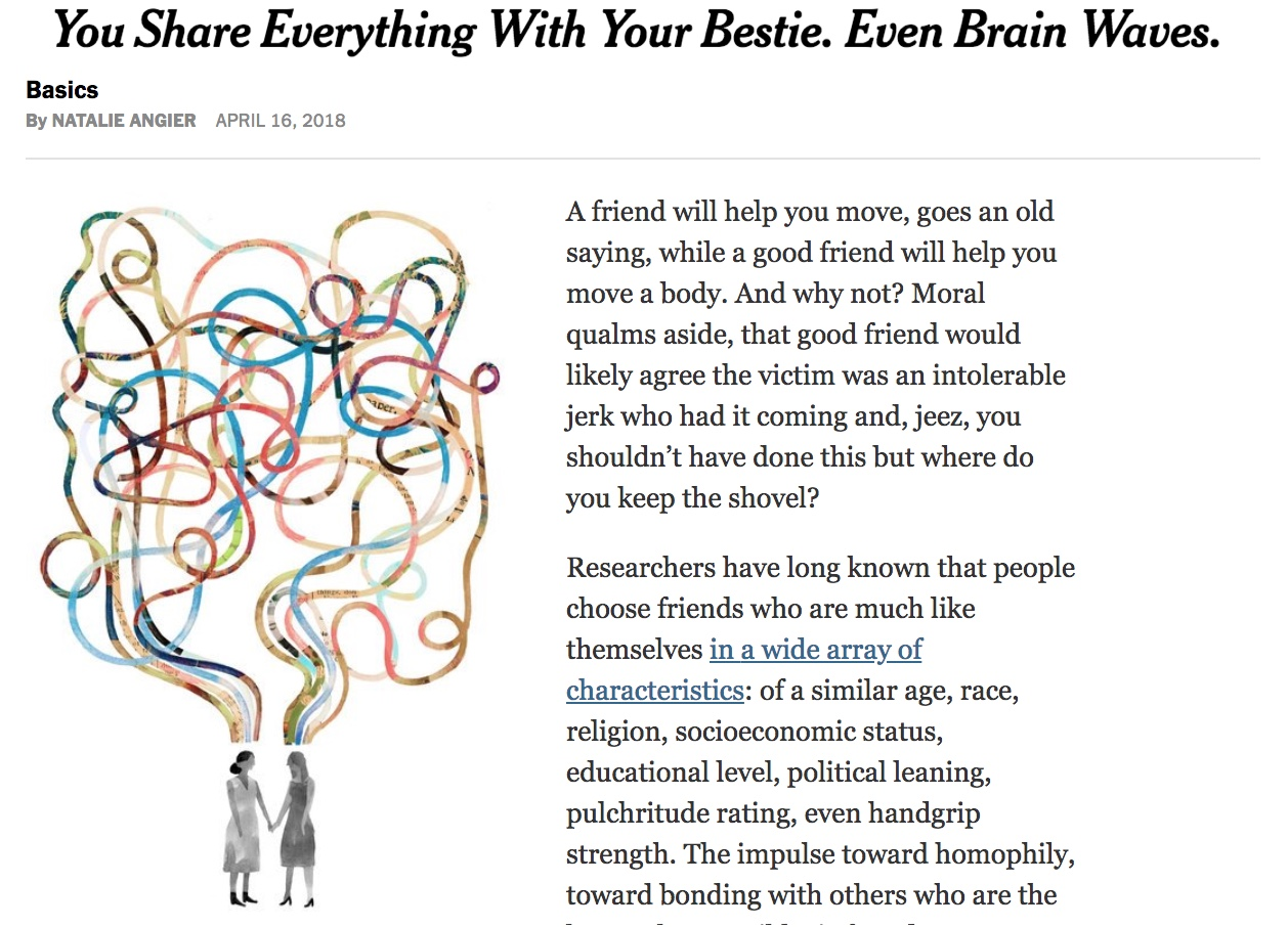 Do we see the world as our friends do? - Recently we showed that the brains of friends respond in remarkably similar ways. Click on the New York Times article to learn more.