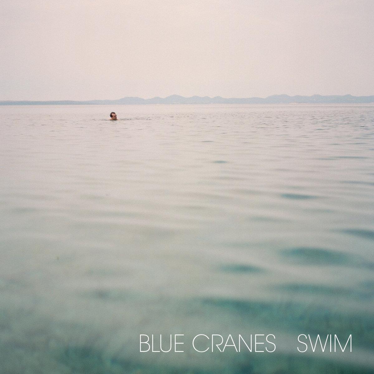 Blue Cranes Swim.jpg