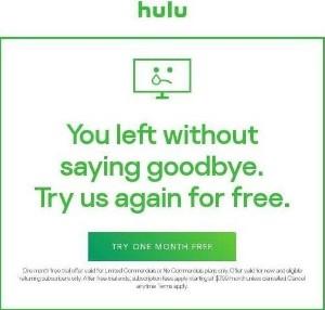 Hulu Winback.jpg
