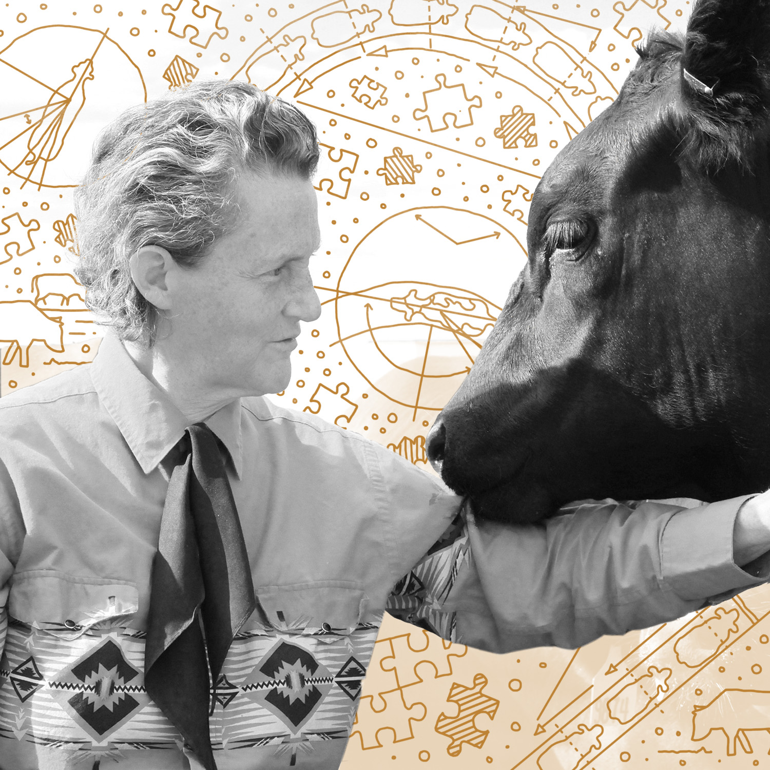 """Mary Temple Grandin    Mary Temple Grandin is an American professor of animal science at Colorado State University, consultant to the livestock industry on animal behavior, and autism spokesperson. She is one of the first individuals on the autism spectrum to publicly share insights from her personal experience of autism, and invented the """"hug box"""" device to calm those on the autism spectrum."""
