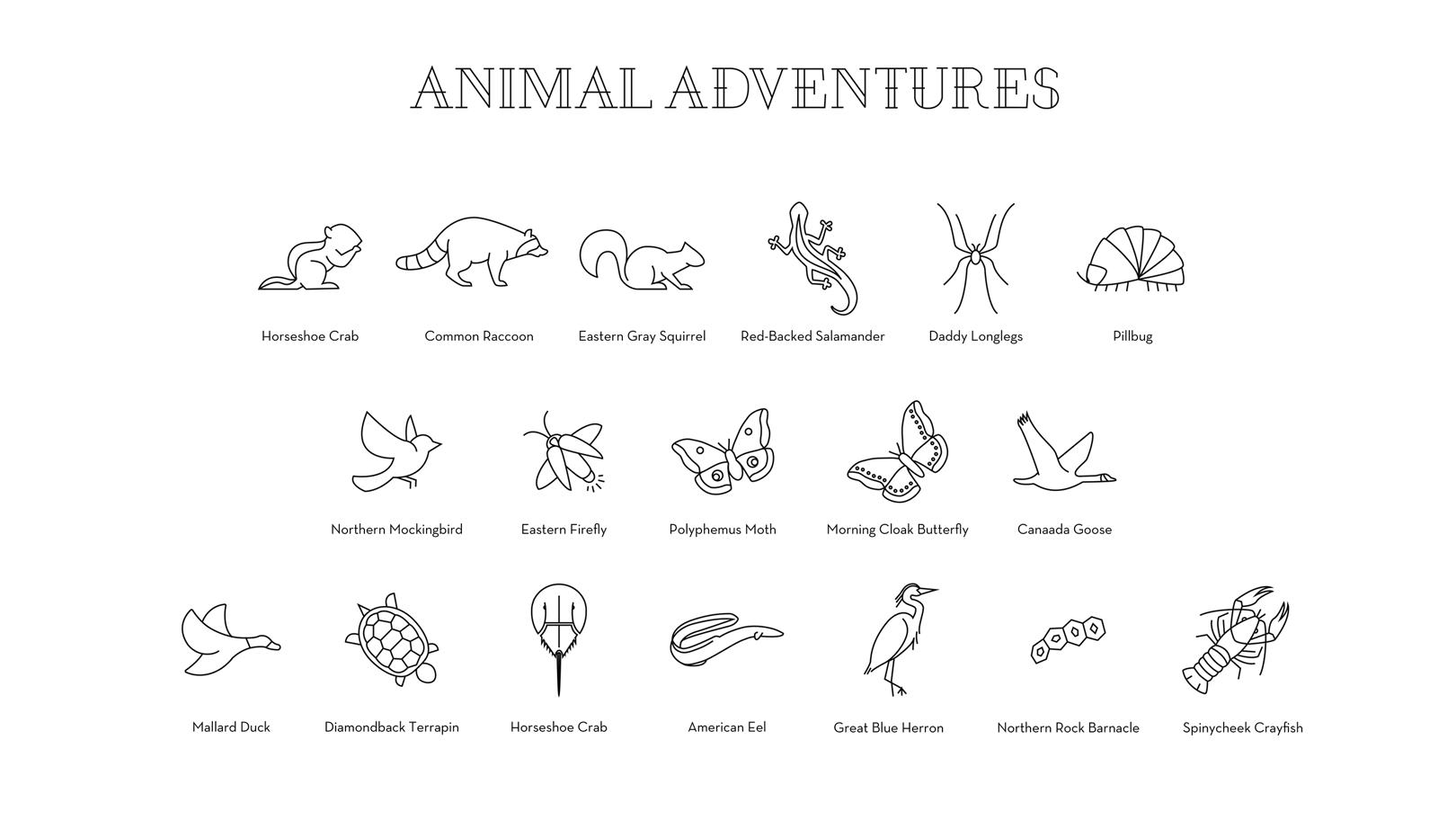 826_Individuals_Animals_01.png