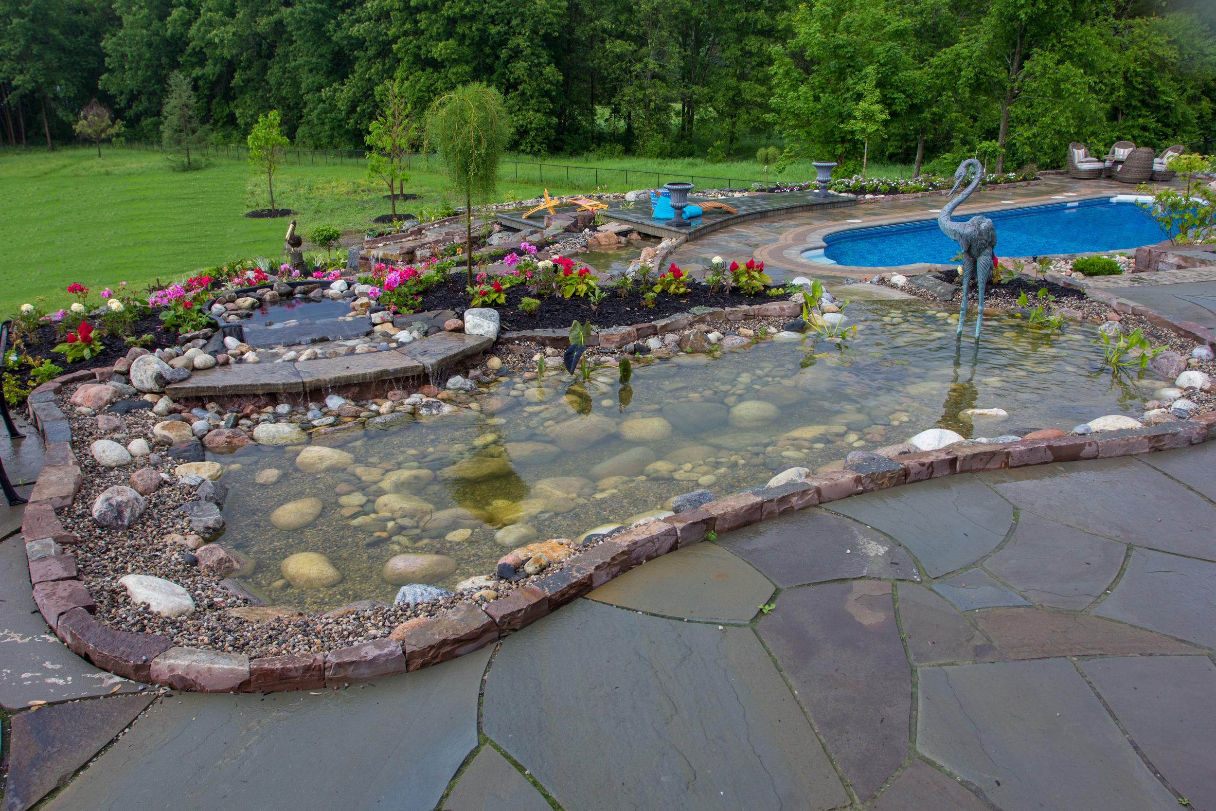 top pond (1 of 1).jpg