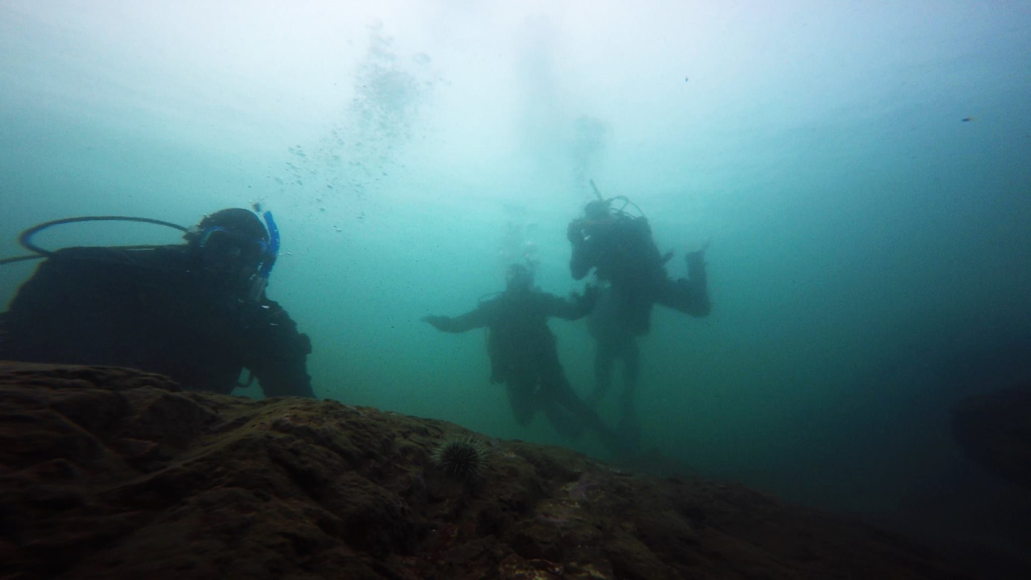 The finishing Dive 4, as part of last month PADI Open Water Diver Course. Good job everyone!