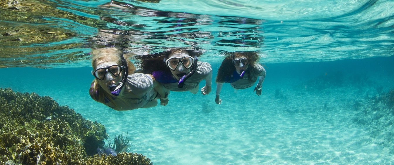 Personal Gear - The first pieces of equipment any new diver or underwater enthusiast should look to buy!Having your own personal gear hugely improves your comfort and enjoyment in the water!Check out some of our most frequently purchased items below!