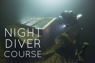 As night is when lots of aquatic life come out to play, this course is a must for any diver who wants to experiance the same dive site in a completely new way...