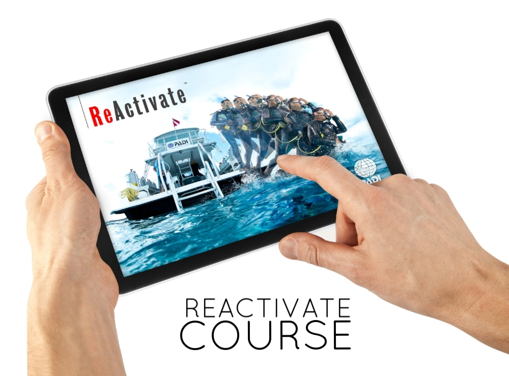 Recieve an e-learning code to brush up on your Scuba Knowledge at home in your own time. Then once finished join us for a 1 Hour Pool Refresher Session, before recieving your brand new PADI REACTIVED Certification Card.