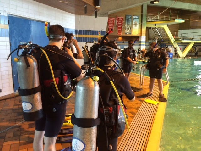 Step 2 - Confined Water Skill Development - To help you fine-tune your dive skills and learn how to supervise scuba diving activities and assist with diver training