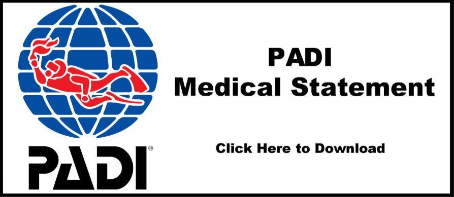 medical link.JPG