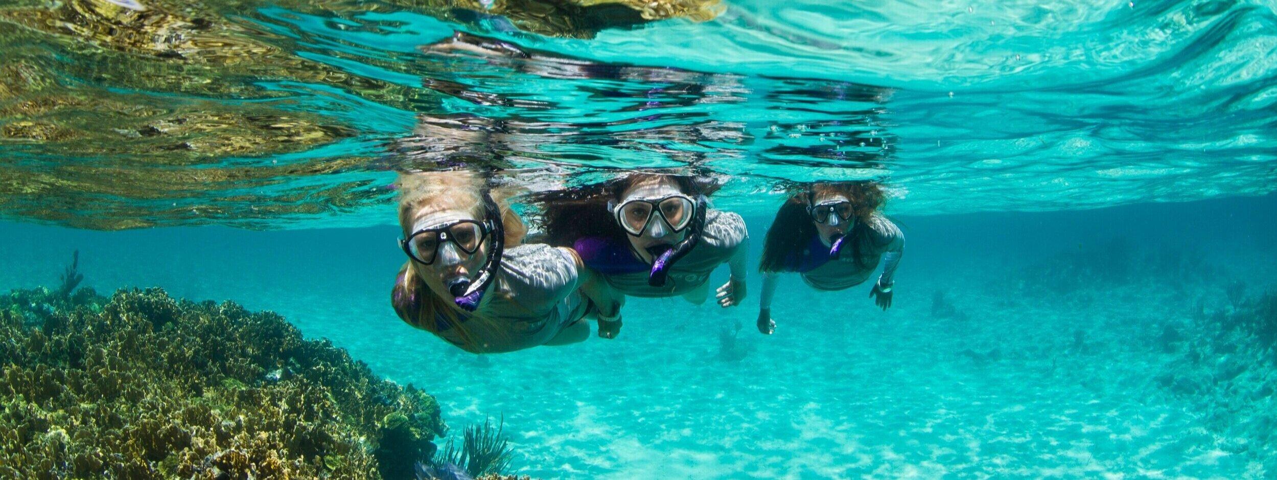 Guide to Choosing Snorkeling Equipment — Rowand's Reef Scuba Shop