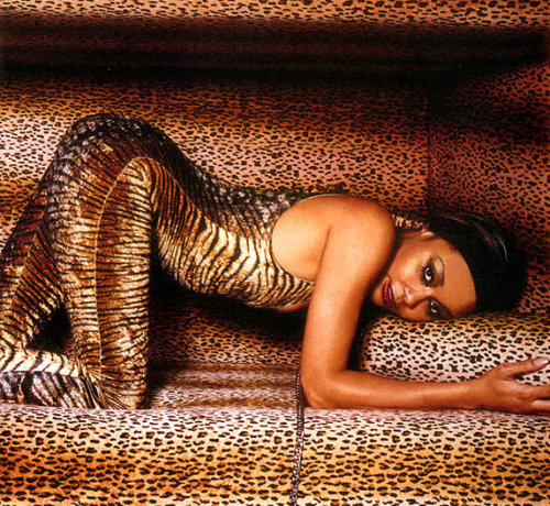 Joi_cheetah.png