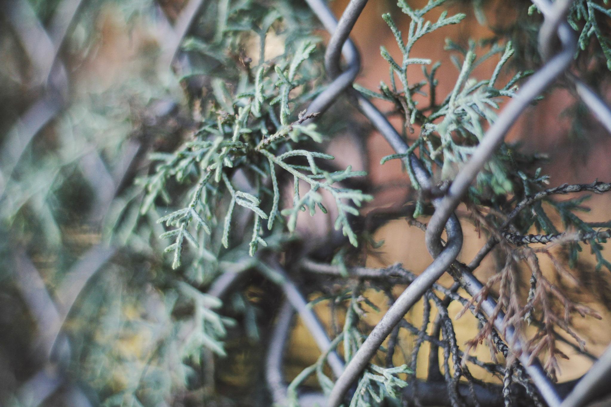 march30th_083 edit.jpg