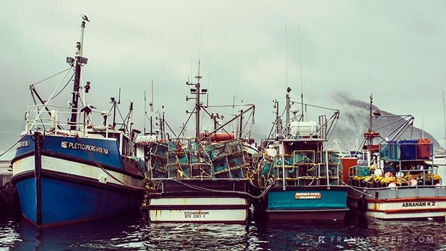 Hout Bay harbour Home to struggling small-scale fishers, squashed between declining resources, large industry and marine protected areas.