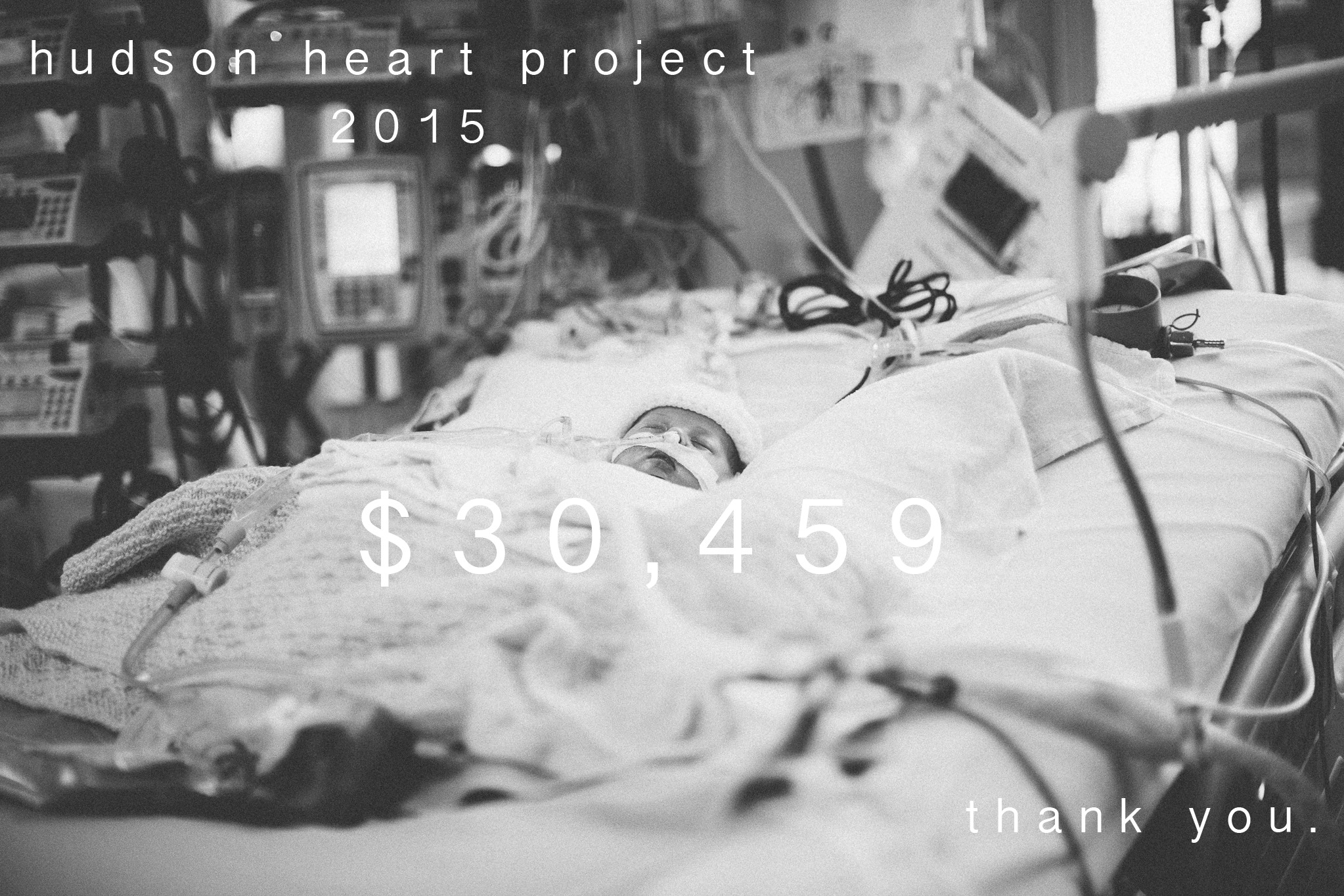 hudsonheartproject.jpg