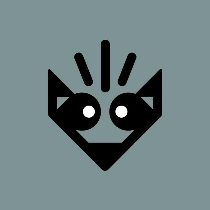 _060: Raccoon