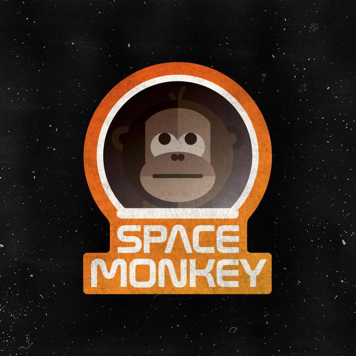 _349: Space Monkey