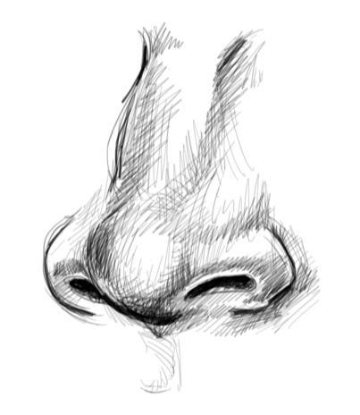 00021212 nose.PNG