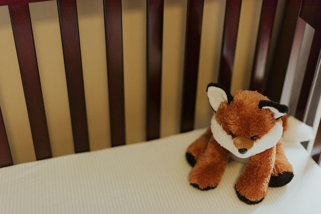 in-home-newborn-session-jonah-dakota-chasity-photography-28.jpg