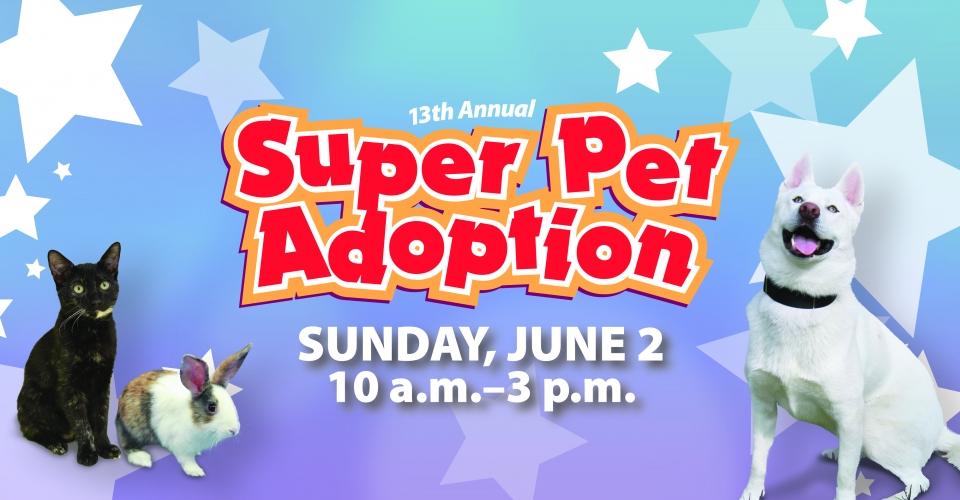 Irvine 2019 Super Pet Adoption 6.2.19.jpg
