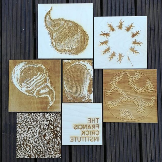 Beautiful laser cut stamps for tomorrows #printmaking workshop at @thefranciscrickinstitute. We will be layering up fluorescent Inks onto tote bags from 10-4. #lasercut #woodcut #reliefprint #workshop