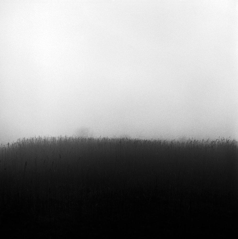 Untitled-(3)-(3)-Edit.jpg