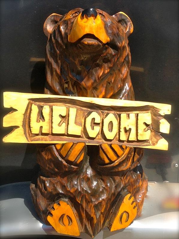 Yellowstone-Bear-1.jpg
