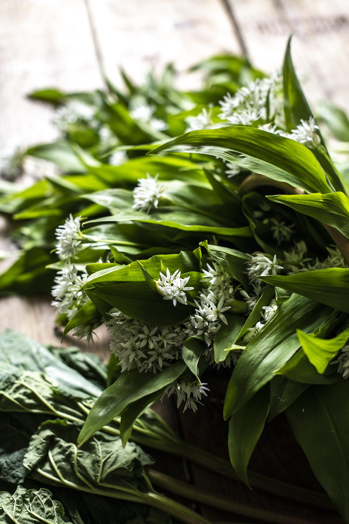 Wild Garlic with Flowers.jpg