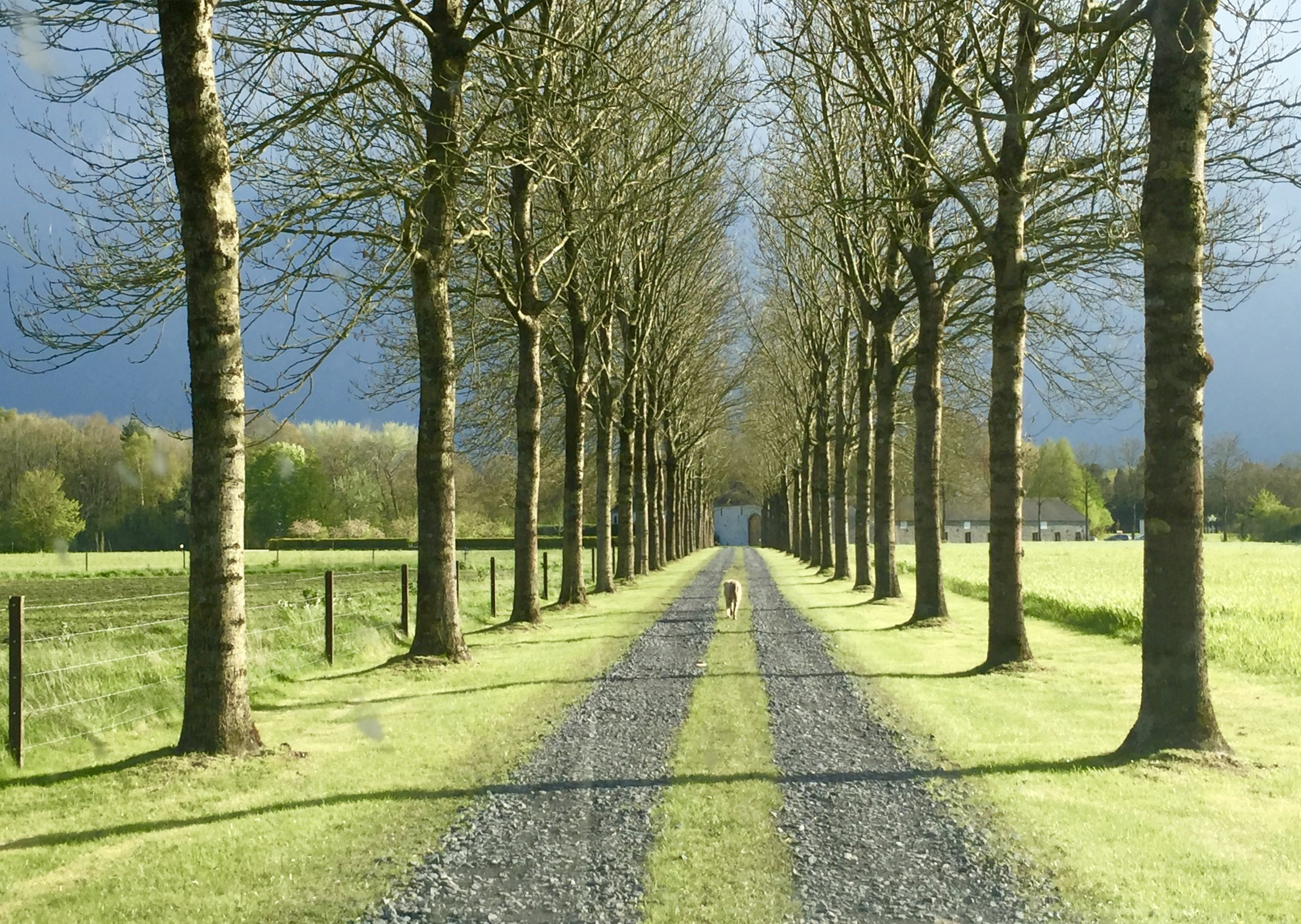Scenery, history and beer    Backroads of Belgium    Get to know the less traveled roads of Belgium.