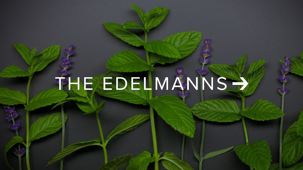 The Edelmanns director thumb.jpg